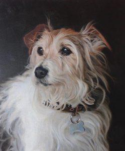 Paul Brason - Dog Portrait